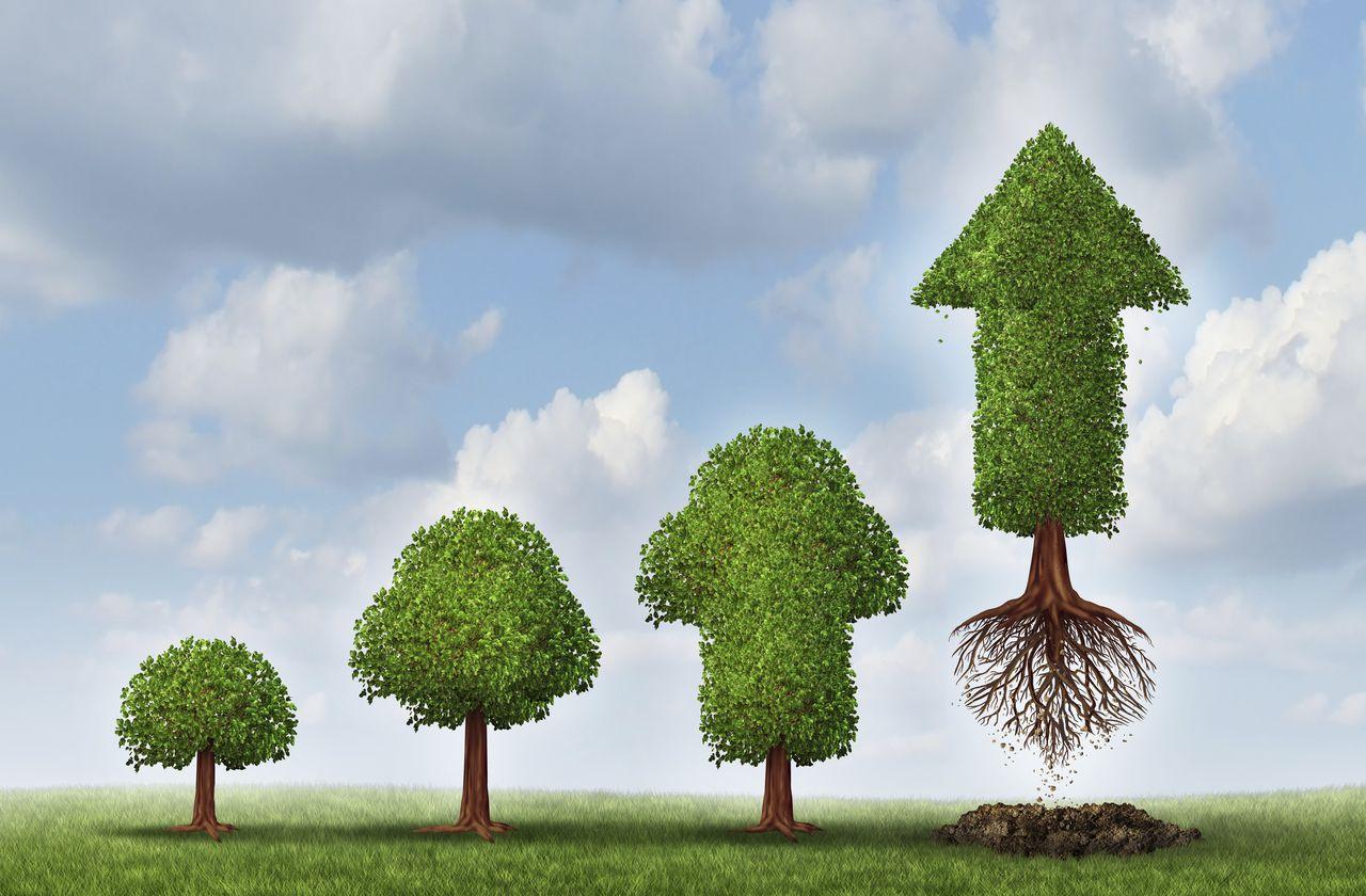 Jouw Marketingpartner: 7 simpele acties voor meer groei